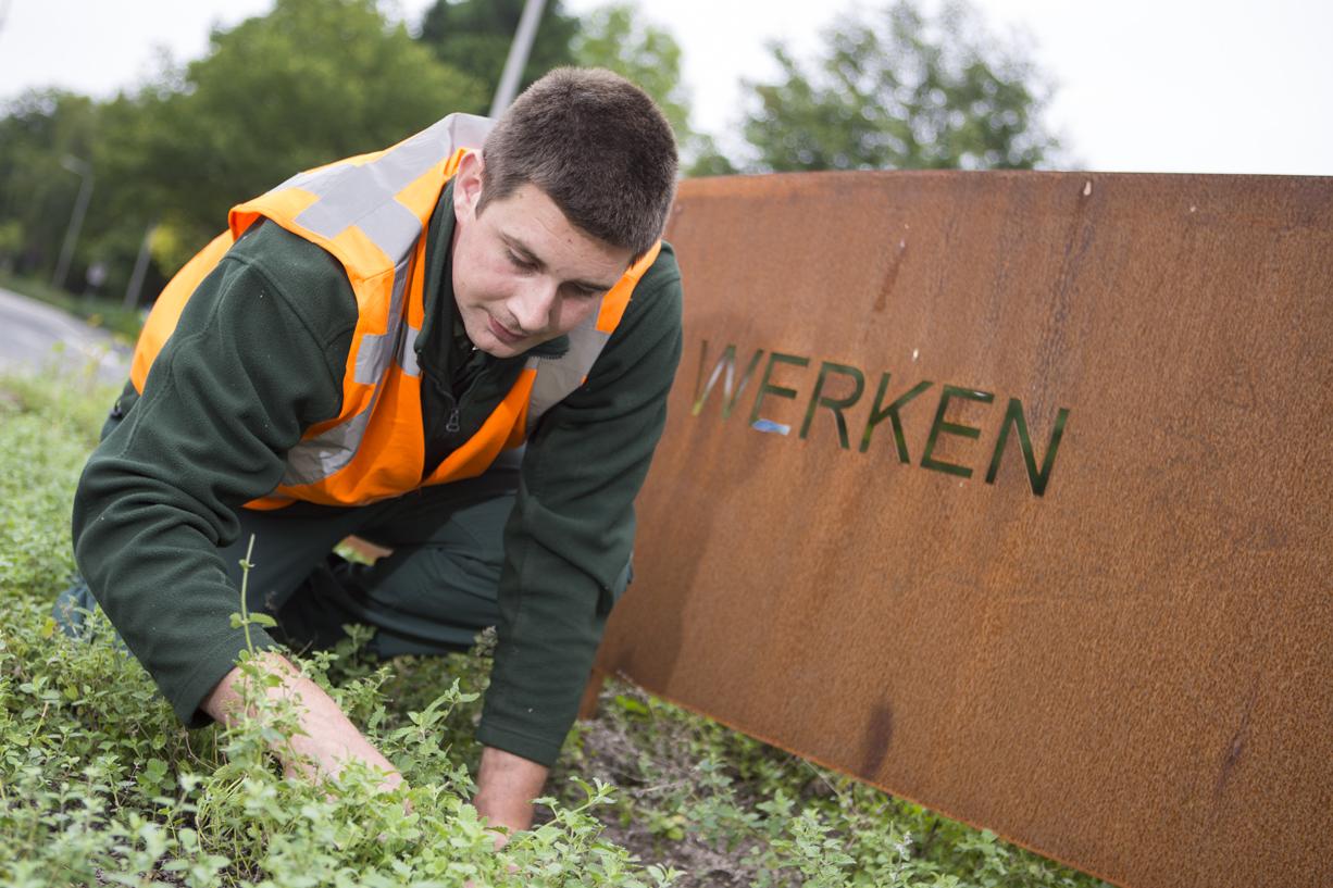 Werken in het groen